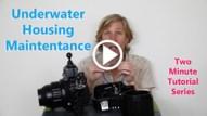 underwater housing maintenance thumbnail