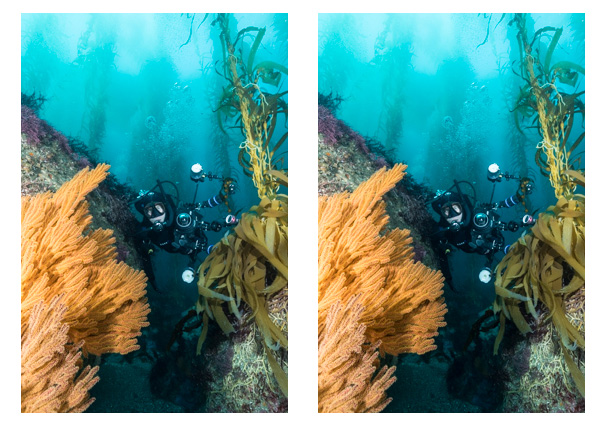 adding-blacks-to-underwater-photos
