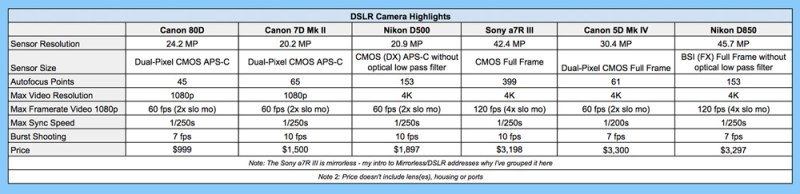 dslr-camera-comparison-for-underwater-photography-1