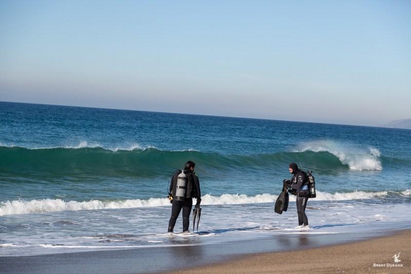 beach divers in malibu