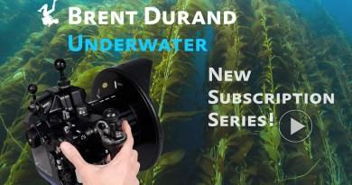 video tutorial series