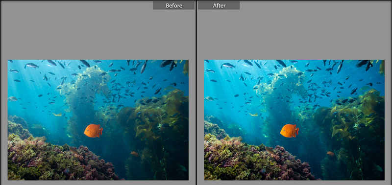 Before and After feature in Lightroom.