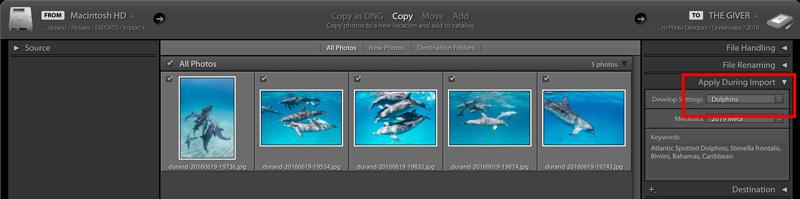 Screenshot showing Lightroom import dialog box and applying preset.