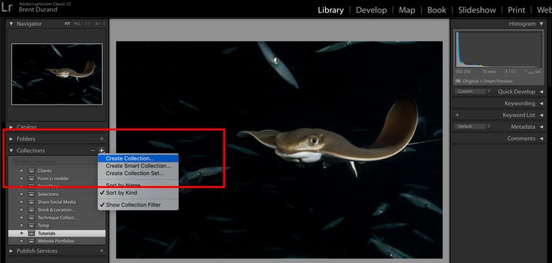 Creating a new collection in lightroom.