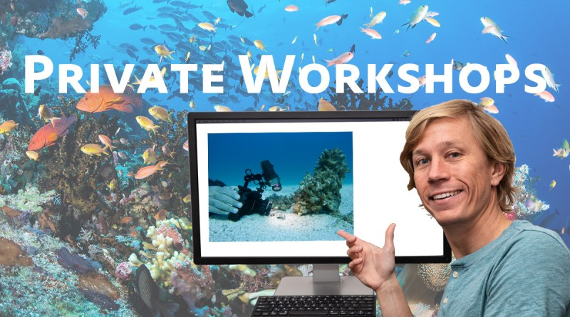 private underwater photo workshops