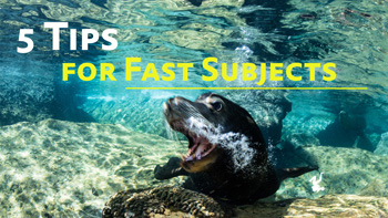 5 Tips for Fast Subjects video tutorial thumbnail