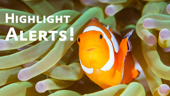 In-Camera Highlight Alerts video tutorial thumbnail