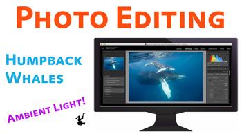 Edit This Photo - Humpback Whales video thumbnail