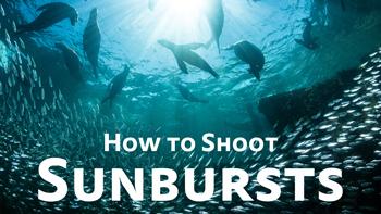 how to shoot underwater sunbursts