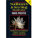 Nudibranch and Sea Slug Identification, Indo-Pacific Book