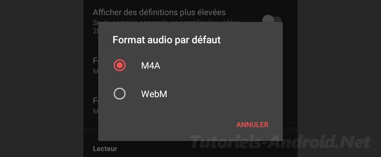 Format Audio par défaut NewPipe