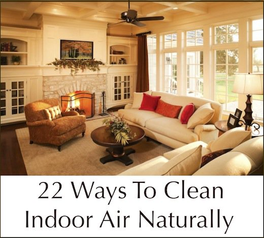 22-ways-to-clean-indoor-air-naturally[1]