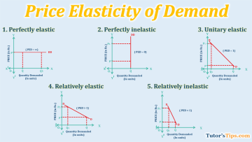 Price elasticity of Demand 1 - Business Economics