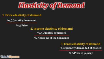 elasticity of Demand 1 - Business Economics