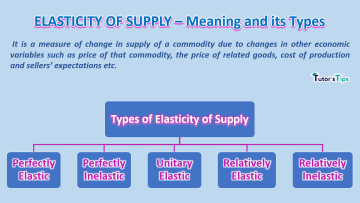 elasticity of supply min 1 - Business Economics