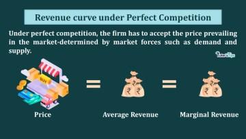 Revenue curve under Perfect Competition min - Business Economics