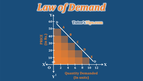 Law-of-Demand-Feature-Image