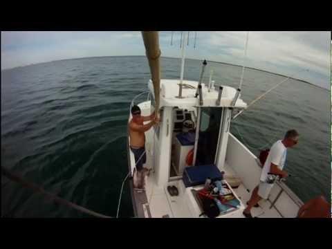 Pêche à la traîne été 2012