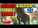 SECRET GLITCH (LE VRAI POUVOIR DE LA FOUDRE !!) DANS ZELDA BREATH OF THE WILD BOTW ASTUCE FR #415