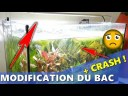 COMMENT AMELIORER SON AQUARIUM [+RECIT CRASH DE BAC !!!] Aquariophilie by Aquazen
