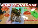 tuto 2 cloporte : mon mini terrarium forestier naturel (bio actif) pas cher ! isopodesmania fr