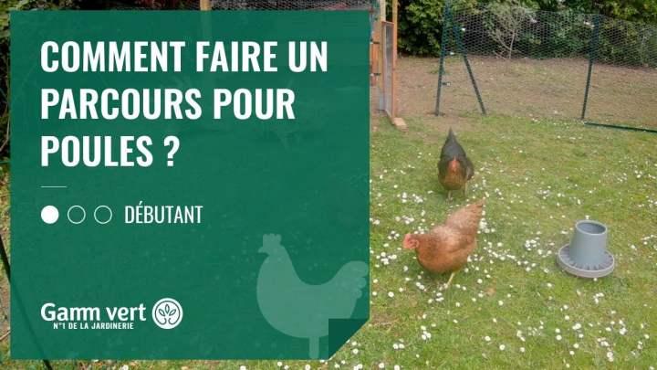[TUTO] Comment faire un parcours pour les poules ? – Jardinerie Gamm vert