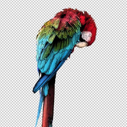 Tuto photoshop créer un portrait artistique