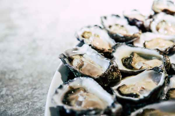 zinco ostriche fonti pelle salute sana alimentazione dieta