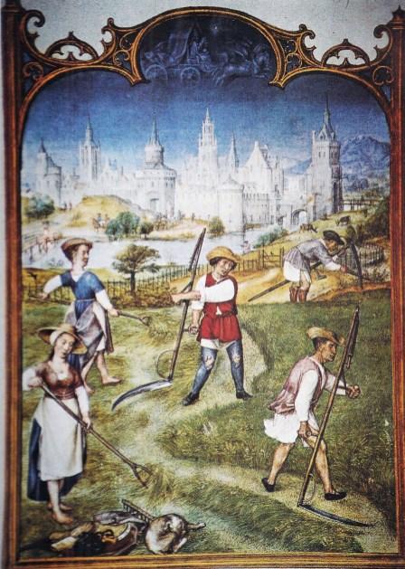 Il paesaggio agrario nella Toscana del Medioevo  tuttatoscana