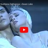"""#TuttoDanzaOgniGiorno - """"Il Lago dei Cigni"""" con Roberto Bolle e Svetlana Zakharova"""