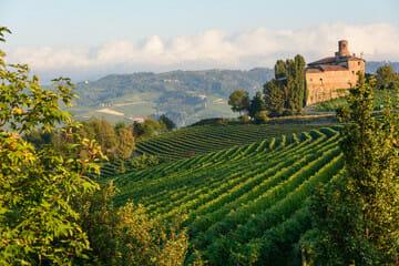 Piemonte tutte le notizie La vostra finestra sulla Regione Piemonte sempre aggiornata! GUARDA E LEGGI!