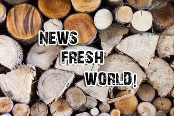 Cronaca tutte le notizie in tempo reale! CLICCA E LEGGI!!