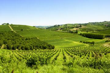 Piemonte tutte le notizie Tutto sulla Regione Piemonte eventi fatti avvenimenti notizie curiosità mostre appuntamenti e molto altro!