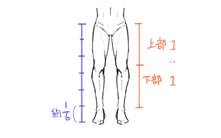 脚の描き方 1