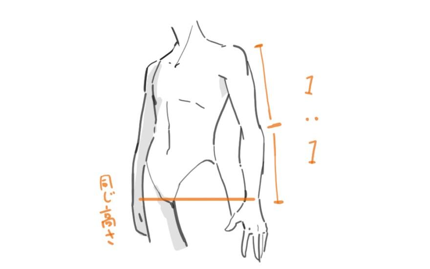 腕の描き方1