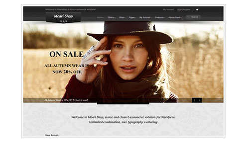 40+ of the Best WordPress eCommerce Themes