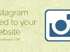 instagram-feed-header-image