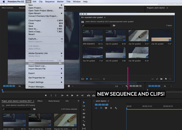 05-premiere-to-davinci-roundtrip-editing