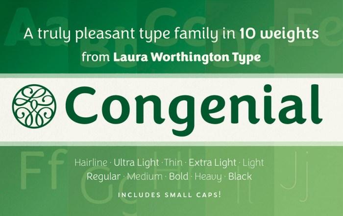 10-font-bundle-type-typeface-photoshop-01-1