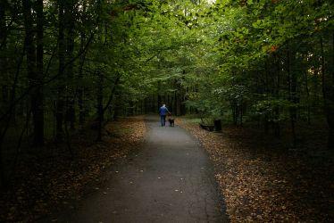1200px-Park_repecki_w_Tarnowskich_Górach,_MTK (1)
