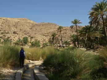 Dojście do Wadi Bani Khalid