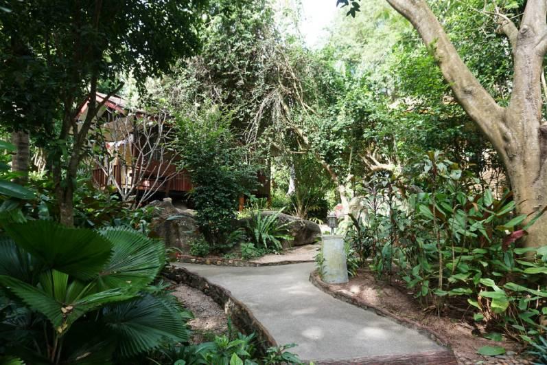Ogród. Nasz domek w tle