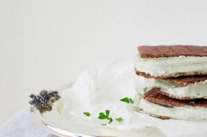 Mint Chocolate Ice Cream Sandwiches (gluten & dairy free) + BIG NEWS!