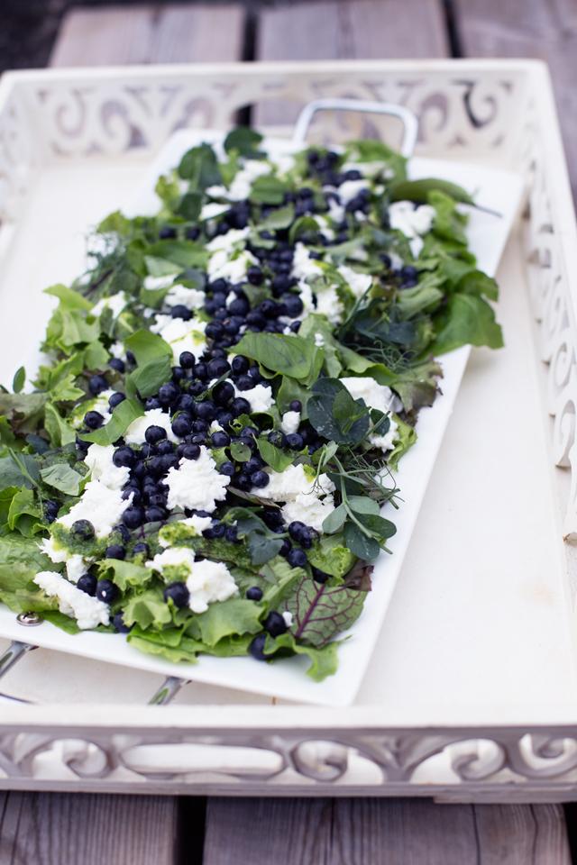 blueberry mozzarella salad