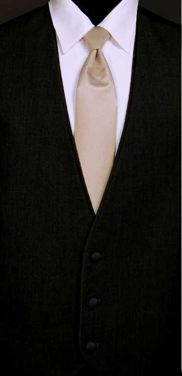 Black Bartlett vest with Taupe Windsor tie