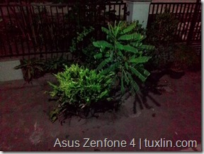 Kamera Zenfone 4 vs Lumia 520 Tuxlin Blog_13