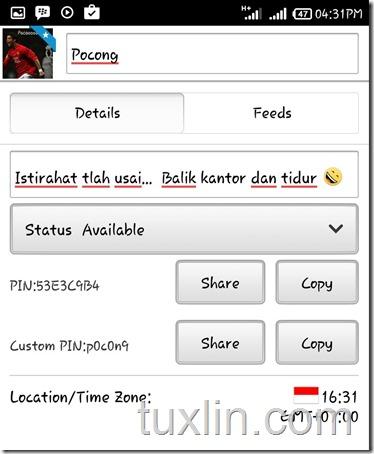 Custom PIN BBM Tuxlin Blog09