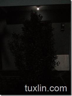 Hasil Foto Kamera Infinix Zero 3 X552 Malam Hari dengan LED flash