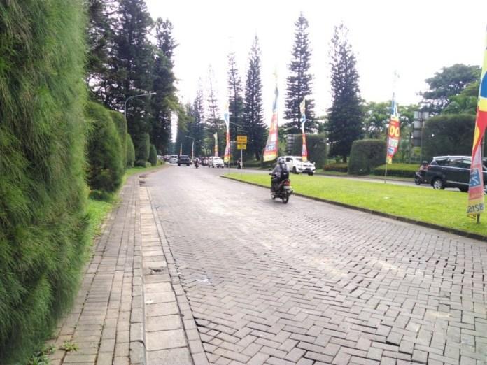 Sampel Foto Asus Zenfone Live ZB501KL