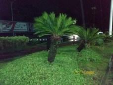 Hasil Foto KameraXiaomi Redmi S2 Malam Hari dengan LED Flash